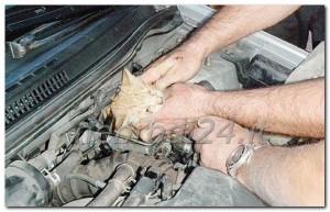 gattino-incastrato-nel-motore