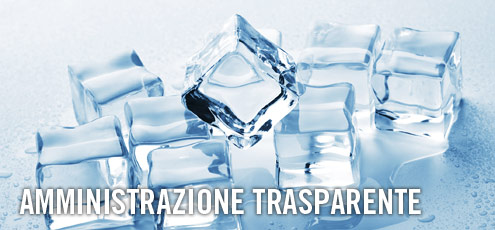 """amministrazione trasparente"""" e/o in(determina)ta trasparenza amministrativa?"""