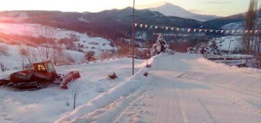 floresta parco neve 2016