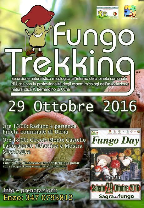 fungo-day-locandina-treking