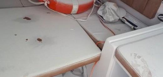 barca scaffidi