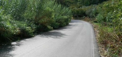 strada-Tortorici-3-750x430