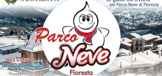 Locandina Parco Neve 2017