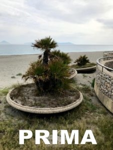 """brolo – consiglieri ed assessori risistemano i vasi """"buttati"""" sulla spiaggia!"""